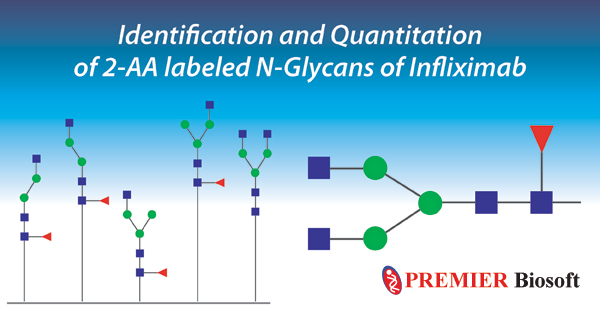 SimGlycan Software for Glycans Identification & Quantitation
